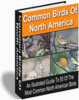 Thumbnail Birding For Everyone Package MRR