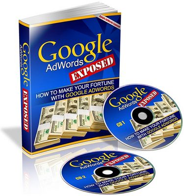 Pay for Google AdWords Exposed eBook & Audio (PLR)