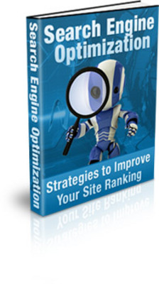 Pay for Search Engine Optimization Strategies eBook (PLR)
