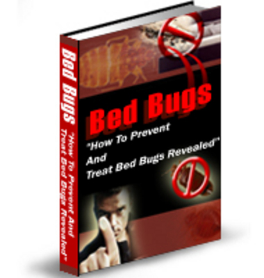 Pay for Bed Bugs: How To Prevent And Treat This Threat PLR
