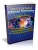 Thumbnail Indispensable Internet Marketing Newbies Guide - Mrr!