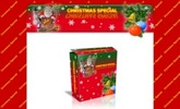Thumbnail 2 Christmas Minisites - Mrr!