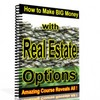 Thumbnail The King Of Real Estate Strategies Revealed - With Resale Rights
