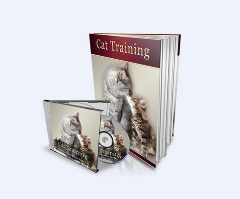 Pay for Cat Training mp3 Audio Book & E-book!  (Mrr)