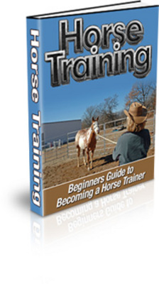 Pay for Beginners Guide To Horse Training
