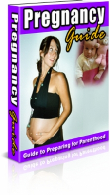 Pay for Pregnancy Guide