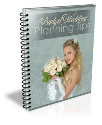 Pay for Wedding Planning On A Budget