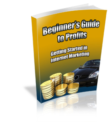 Pay for Beginners Guide To Profits Plr!