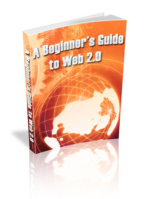 Pay for A Beginners Guide to Web 2.0 - MRR