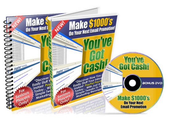 Pay for Make $1000s On Your Next Email Promotion - (PLR)