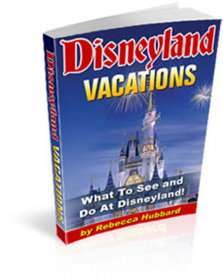 Pay for Take a Vacation To Disneyland!
