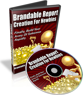 Pay for Brandable Report Creation For Newbies