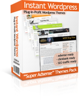 Pay for Instant wordpress Themes - MRR