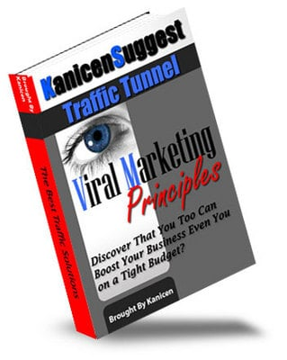 Pay for Viral Marketing Principles - Master Resell Rights