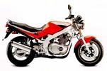 Thumbnail Suzuki GS500 GS500E 1989-1999 Service repair manual