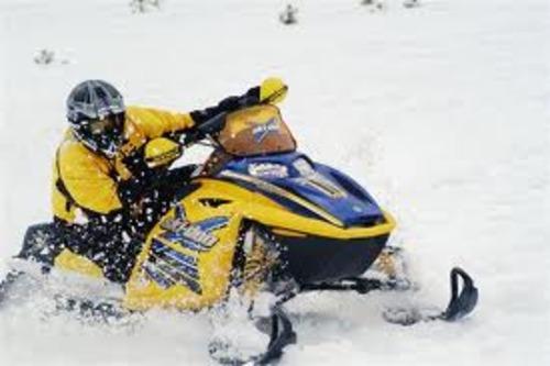 Brp 2004 Rev Ski