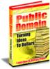 Thumbnail Public Domain: Turning Ideas to Dollar$ PLR