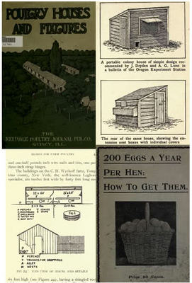 Pay for how to,chicken coops,poultry houses,making more eggs, pdf