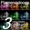 Thumbnail Flamencoloops - 3 cada uno