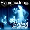 Thumbnail flamencoloops.com - Soleá por Bulerías