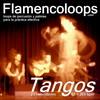 Thumbnail flamencoloops.com - Tangos