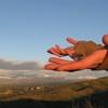 Thumbnail Morning Breeze