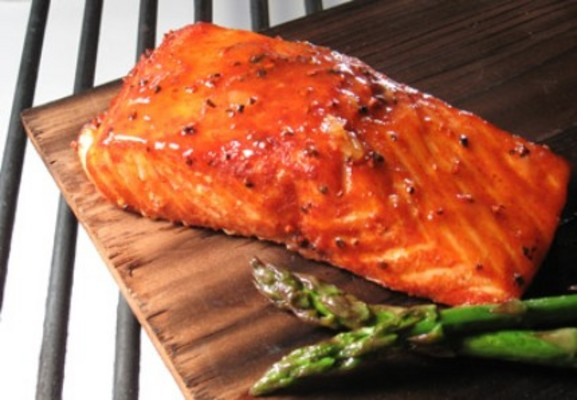 100 Delicious Salmon Recipes - Download Recipes & Cooking