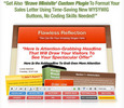 Thumbnail Flawless Reflection WordPress Minisite PLR + BONUS