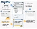 Thumbnail Create A Paypal Custom Page PLR Video