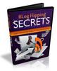 Thumbnail Blog Flipping Secrets  Video Ebook and Video