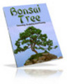 Thumbnail Bonsai Tree with Private Label Rights