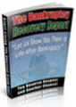 Thumbnail The Bankruptcy Recovery Niche Package with MRR
