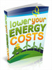 Thumbnail Lower Your Energy Costs - Ebook with PLR