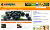 Thumbnail Acai Weight Loss Blog - WordPress Blog with PLR