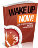 Thumbnail Wake Up Now - eBook with MRR