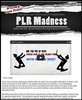 Thumbnail PLR Madness - 1400 Articles Package with PLR