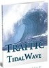 Thumbnail Traffic Tidal Wave - eBook with MRR