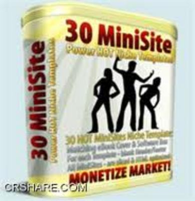 Pay for 30 Minisite Templates with Master Resell Rights
