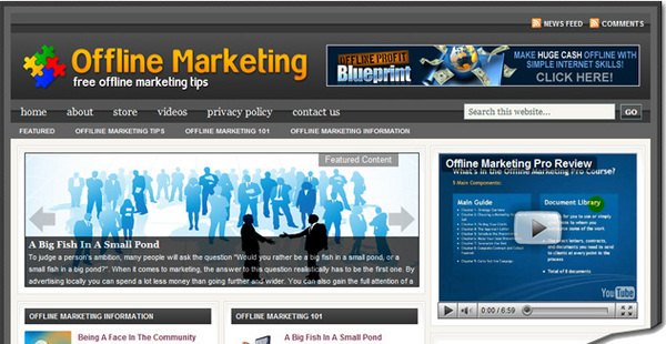 Pay for Offline Marketing Review Site with  PLR Blog & HTML
