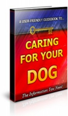 Pay for Caring For Your Dog with Private Label Rights