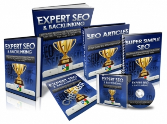Pay for Expert SEO and Backlinking - Package with Resell Rights