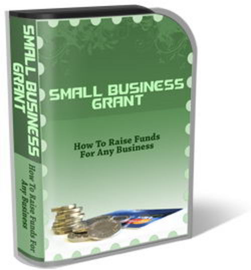 Pay for Small Business Grant Template Pack - Template