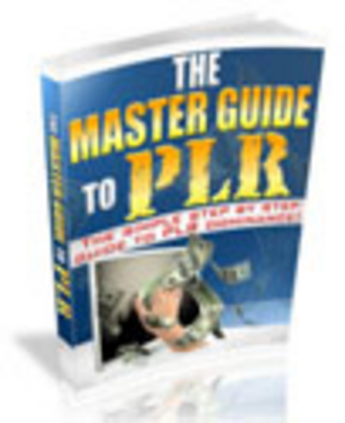 Pay for The Master Guide To PLR - Ebook with PLR