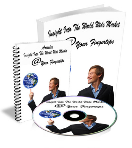 Pay for Insight Into The World Wide Market - Ebook Audio & Pdf with MRR