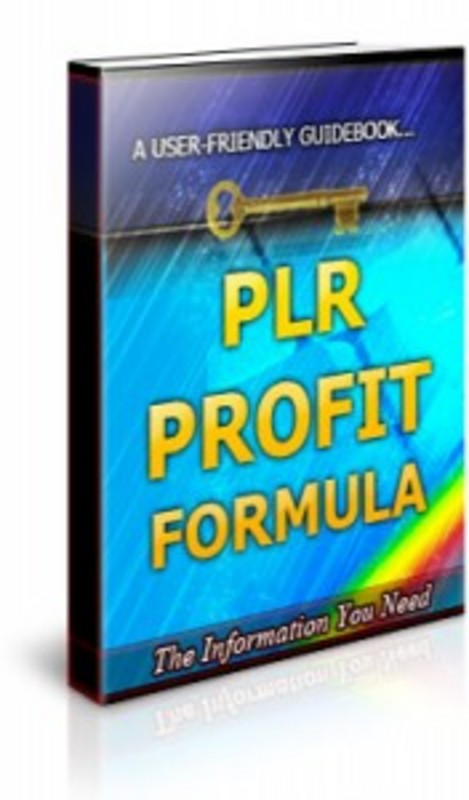 Pay for PLR Profit Formula - Brandable Ebook with PLR