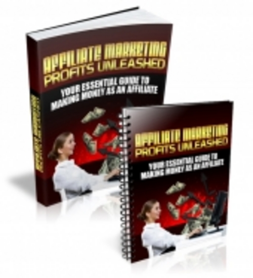 Pay for Affiliate Marketing Profits Unleashed - Ebook with RR
