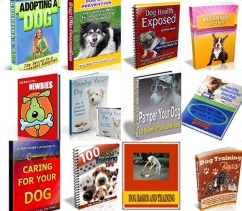 Pay for Dog Training PLR Pack - 10 Ebooks