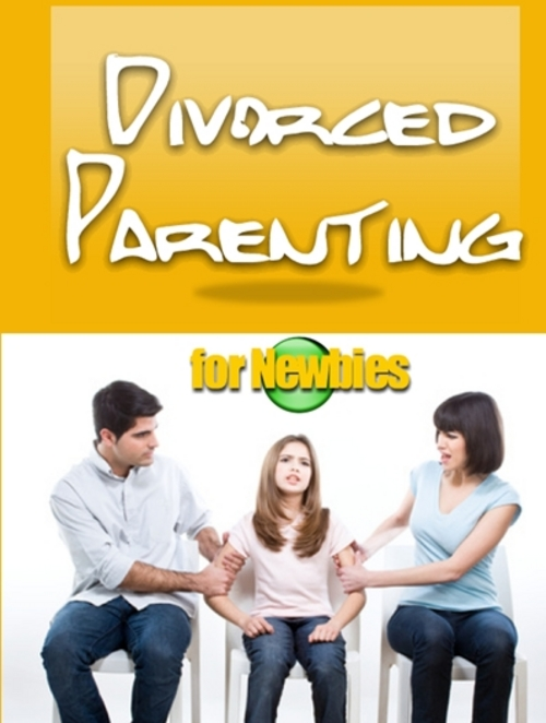 Pay for Divorced Parenting for Newbies - Ebook with PLR