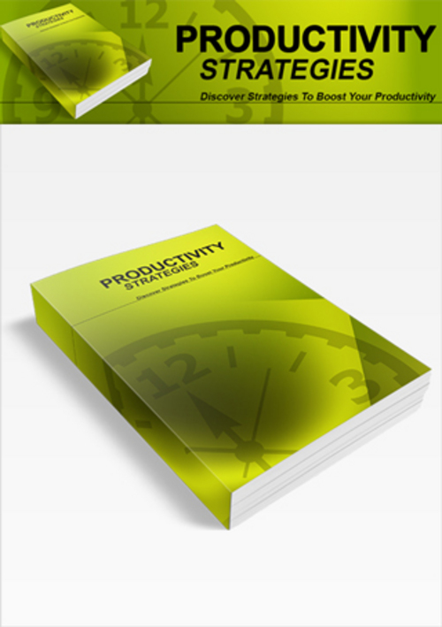 Pay for Productivity Strategies - eBook with MRR