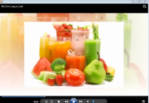 Pay for Diet & Fitness - Package (Videos & Articles) with PLR